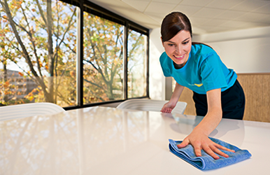 Window, Floor, Tile & Carpet Cleaning